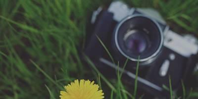 Ofertas de Fotografía e Impresión